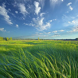 Fresh Air - Phil Koch
