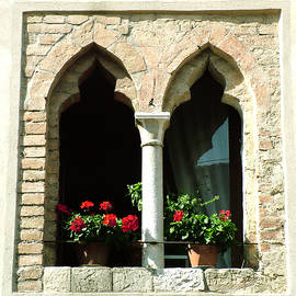 2 Geraniums In Ornate Window by Donna Corless