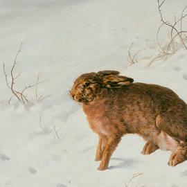 Hare in the Snow - Ferdinand von Rayski