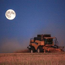 Harvest Moon by David Matthews