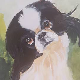 Jim Burris - Japanese Chin