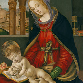 Madonna and Child - Filippino Lippi