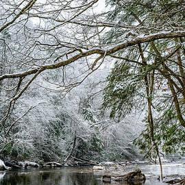 Thomas R Fletcher - March Snow along Cranberry River