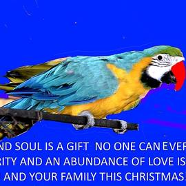 Anand Swaroop Manchiraju - Merry Christmas-4