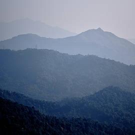 Jitesh Rohra - Misty hills