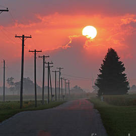Morning Glory by Steve Gass