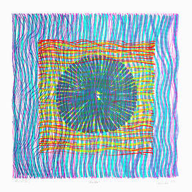 Colorweaves 45 by Hermann Lederle