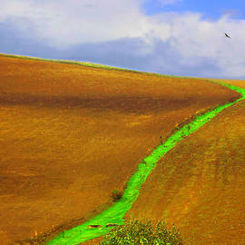Paesaggio Lucano by Nino Oriolo