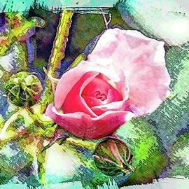 Alice Gipson - Pink Petals