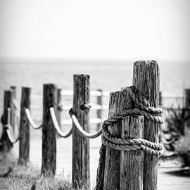 Post with Rope