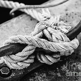 Rope On Cleat by Elena Elisseeva