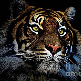 Avalon Fine Art Photography - Sumatran tiger