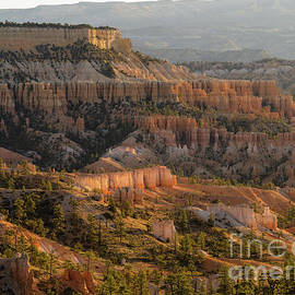 Sunrise Point by Tracy Knauer