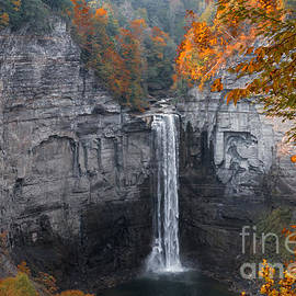 Taughannock Gorge by William Norton