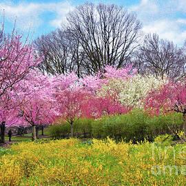 Regina Geoghan - The Glory of Spring