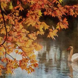 Cathy Kovarik - The Swan