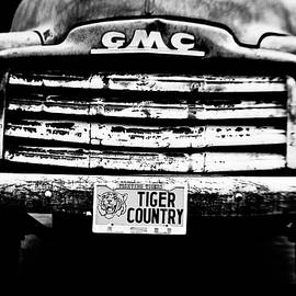 Scott Pellegrin - Tiger Country