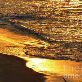 Golden Paradise 2 by Aline Halle-Gilbert