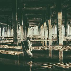 Under the Pier - Martin Newman