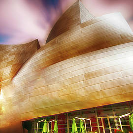 Joseph Hollingsworth - Walt Disney Concert Hall