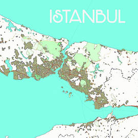 Watercolor Istanbul Map by Celestial Images