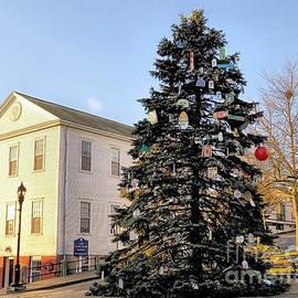 2017 Christmas Tree Plymouth MA