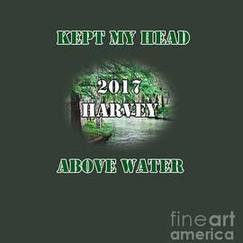 2017 Harvey by Judy Hall-Folde