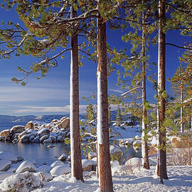 211257 Snow On Tree Sides Lake Tahoe by Ed Cooper Photography