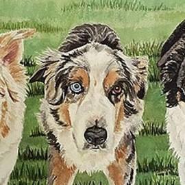 Brenda Kennerly - 3 Austrailian Shepherds