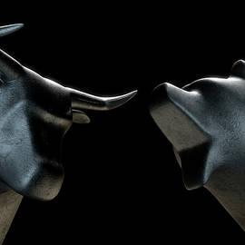 Bull Versus Bear - Allan Swart