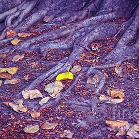 Fallen Leaves I by Neha Gupta