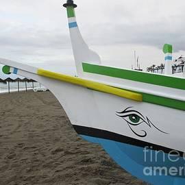 Fishing Boat by Chani Demuijlder