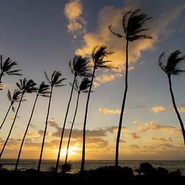 Kauai Mornings - Peter Irwindale