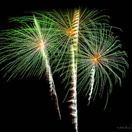 3 Palm Trees Fireworks by Brian Tada