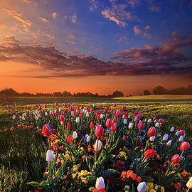 Peace of Mind by Phil Koch