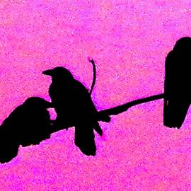 Ravens in Pink by Owl's View Studio