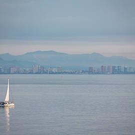 Sailing To Shore by Raelene Goddard