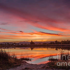Sunrise Reflections by Robert Bales