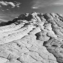 Alex Cassels - The Brain Rocks