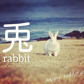 Happy Rabbit Jp - 兎(うさぎ)#青森県 #八戸市