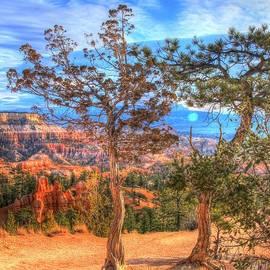 Charlene Cox - Bryce Canyon Utah