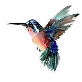 Suren Nersisyan - Flying Hummingbird