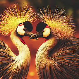 pixabay - grey crowned cranes