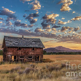 Old Homestead  by Robert Bales
