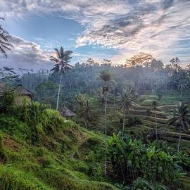 Joana Kruse - Tegalalang - Bali
