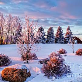 Viktor Birkus - Winter landscape in Saskatchewan
