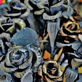 Andy Za - Flower Carpet.
