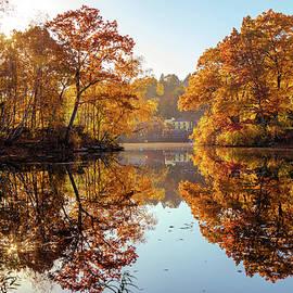 Lilia D - Autumn reflections