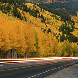 Fall in Colorado - Twenty Two North Photography
