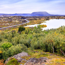 Lake Myvatn landscape by Alexey Stiop